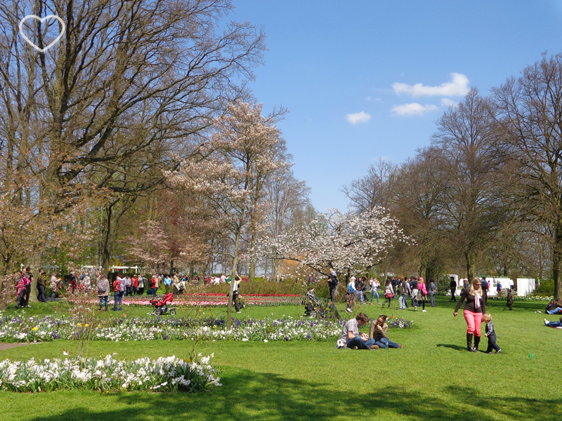 Uma área ampla, de gramado com várias pessoas passeando e descansando.