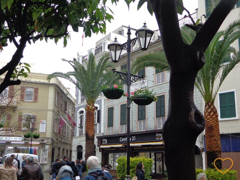 Foto de uma parte do centro, com árvores tropicais.