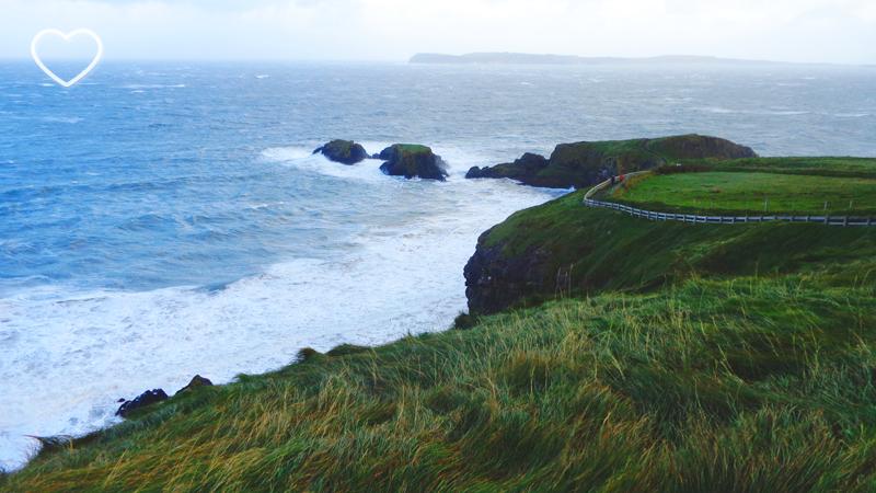 A vegetação mexida pelo vento. Muitas curvas e precipícios. O mar azul e revoltoso. Vê-se o caminho pavimentado pela orla.