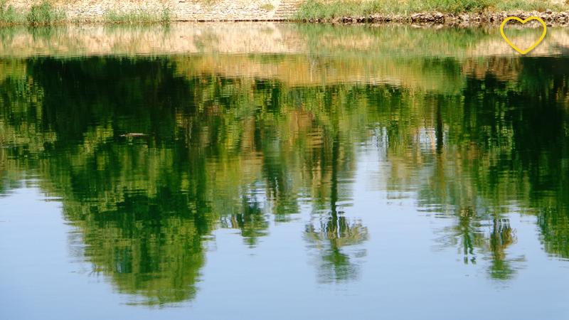 Reflexo da vegetação no rio.