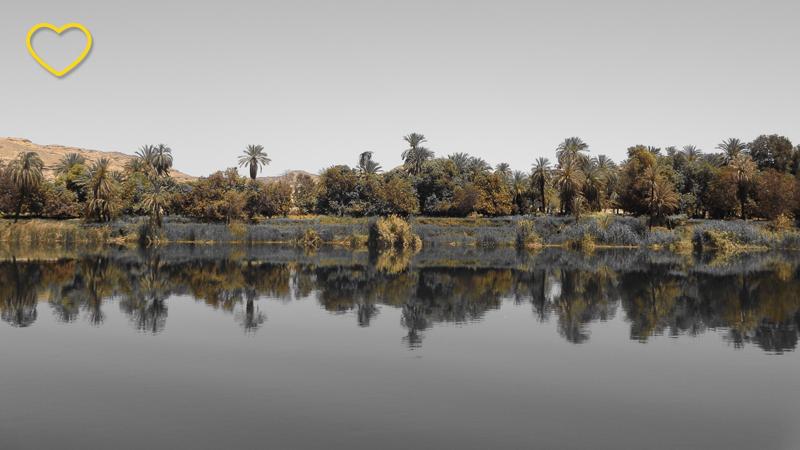 Vegetação em um trecho do Nilo e reflexo na água.