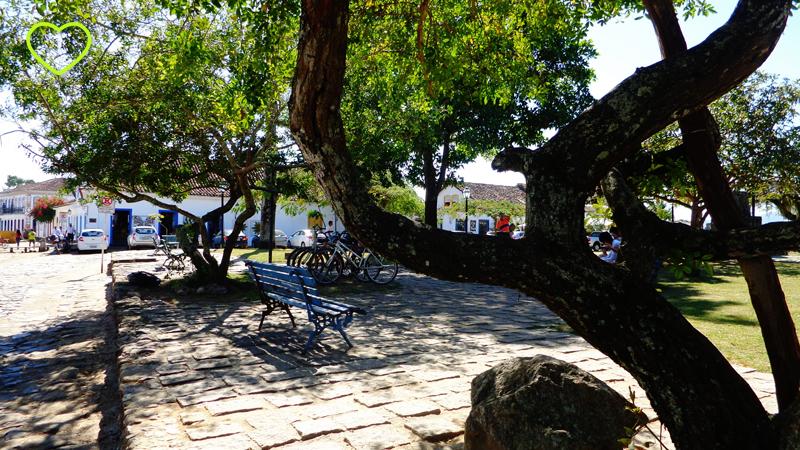 Praça ao fundo e um tronco de árvore retorcido em primeiro plano.