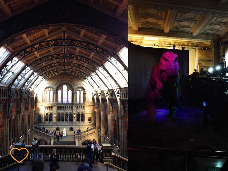 Duas fotos: uma do interior do museu e outra de um modelo de tiranossauro.