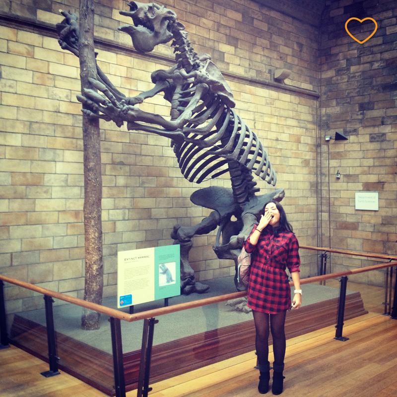 Esqueleto de um megatherium, uma preguiça gigante.