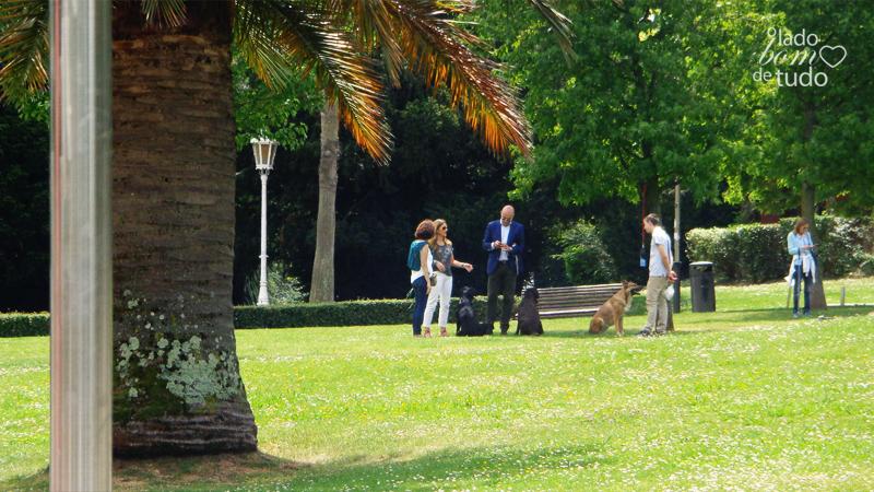 Em um parque, está um grupo de pessoas com seus cachorros.