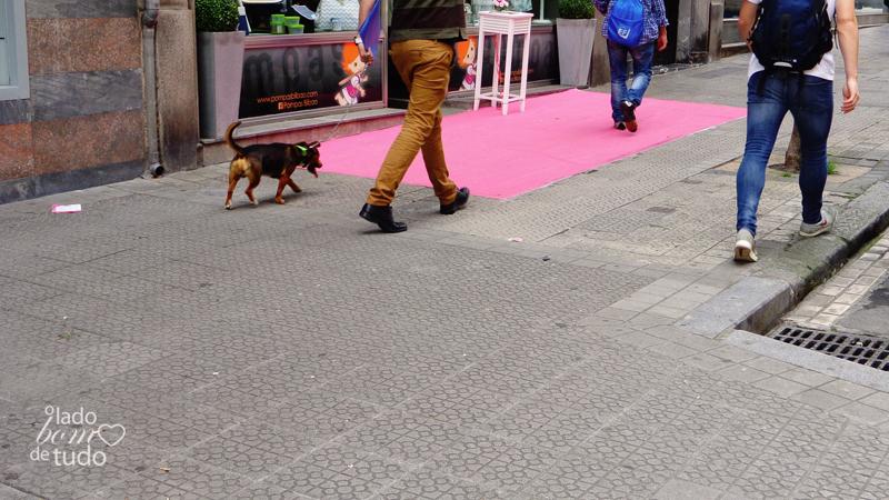 Na cidade, na calçada, está um senhor com um cachorro, passeando.