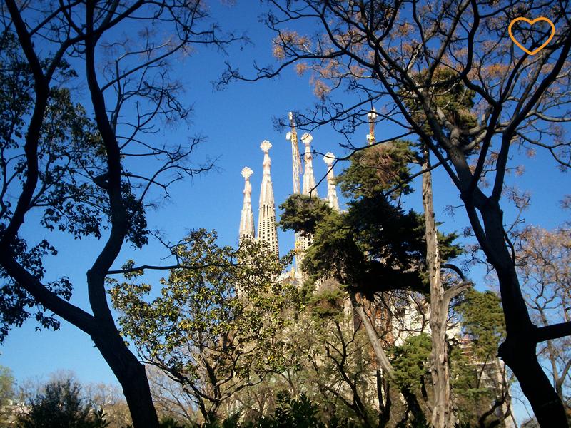 As torres (pináculos) do templo da Sagrada Família, entre uns ramos de uma árvores.