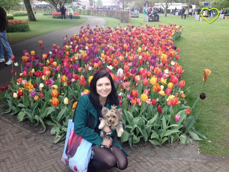 Lupe eu com tulipas na Holanda.