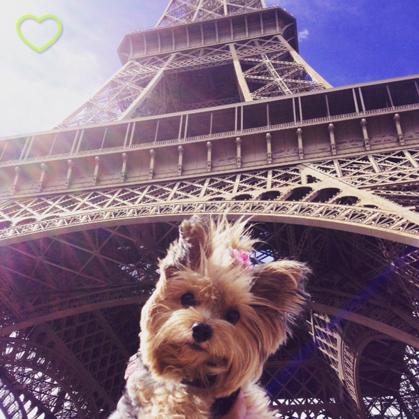 Lupe e a Torre Eiffel.